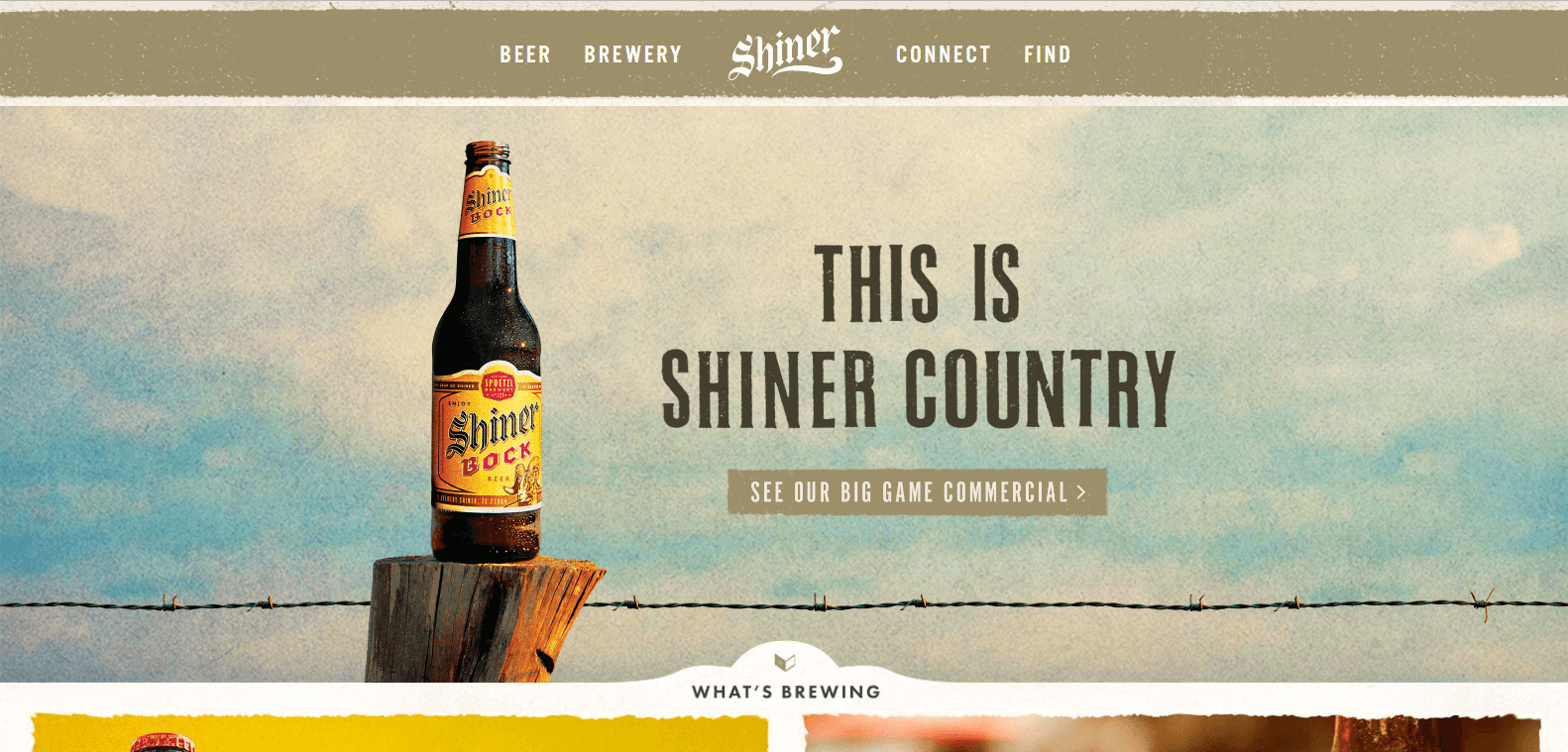 web design ideas shiner